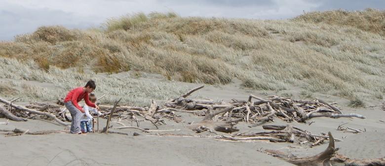 Seaweek Event: Foxton Beach Cleanup