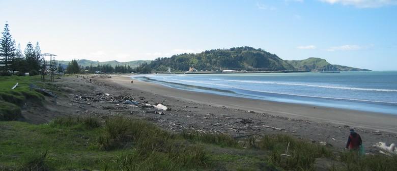 Plastic Bag Free Tairawhiti Monthly Beach Clean Up