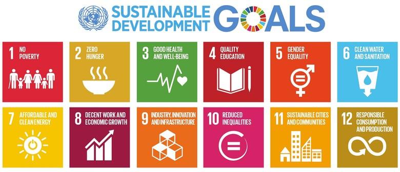 Sustainability Presentation By Professor David Griggs
