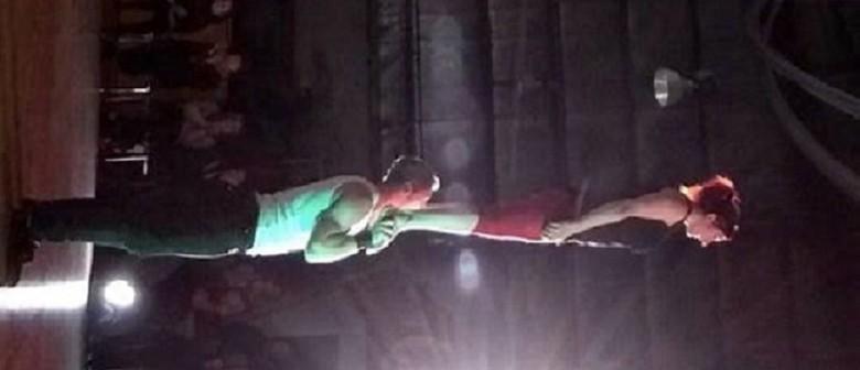 Introduction to Adagio (Partnered Acrobatics)