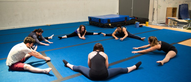 Circus Fit Course - Morning Classes