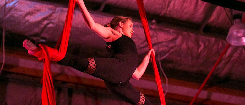 Intro to Aerials 4-week Course - Morning Classes