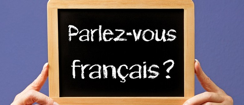 French Intermediate Level 5 Language Course