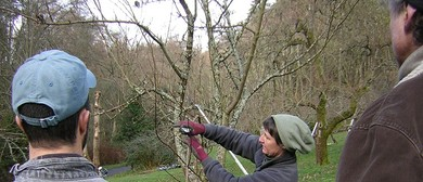 Pruning Course