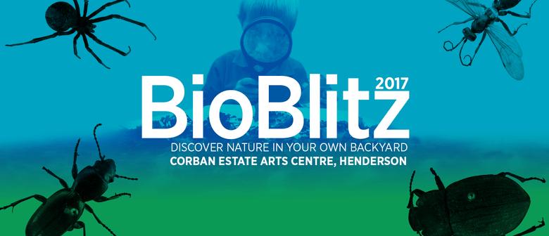 Bioblitz 2017