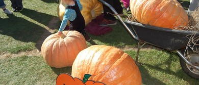 Little River Pumpkin Festival