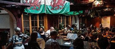 Celtic Music Session