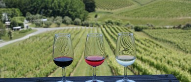 Wine & Food Tours