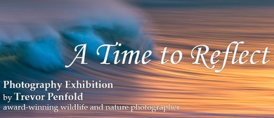 Exhibition - A Time to Reflect