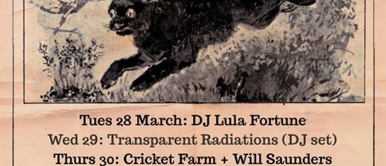 Transparent Radiations