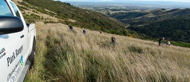 Port Hills Volunteer Restoration Planting: SOLD OUT