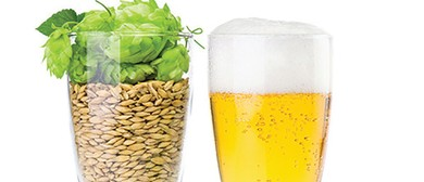 Become a Brewer