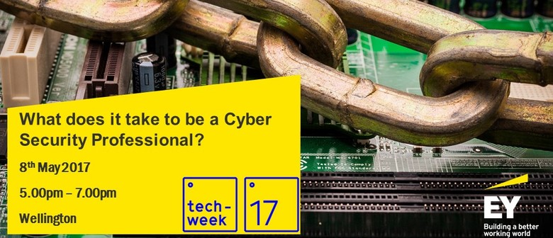 What Does It Take to Be a Cyber Security Professional?