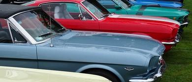 Mustang Display