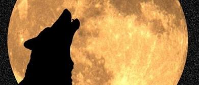 Baching At the Moon