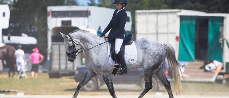 Dressage Central Districts Winter Show