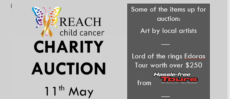 Reach Child Cancer Charity Auction