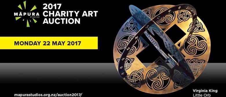 Rotary Charity Art Auction Fundraiser for Māpura Studios