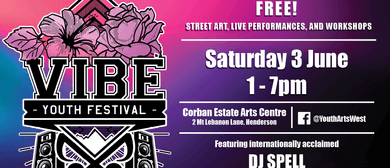Vibe Youth Festival 2017