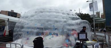 Mt Ruapehu Snow Globe