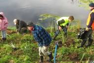 Whakatu Community Planting Day