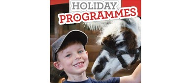 Holiday Programmes for Kids