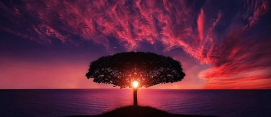 Meditation for Health & Wellbeing