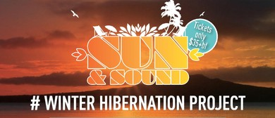 Sun & Sound Winter Hibernation Project - Presents ICARUS