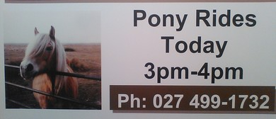 Huia Road Horse Club Childrens Pony Rides Invitation