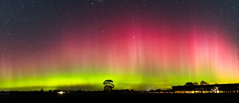 Chasing the Aurora Australis Around and Above New Zealand
