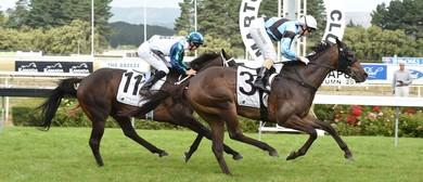 Marton Jockey Club Twilight Races
