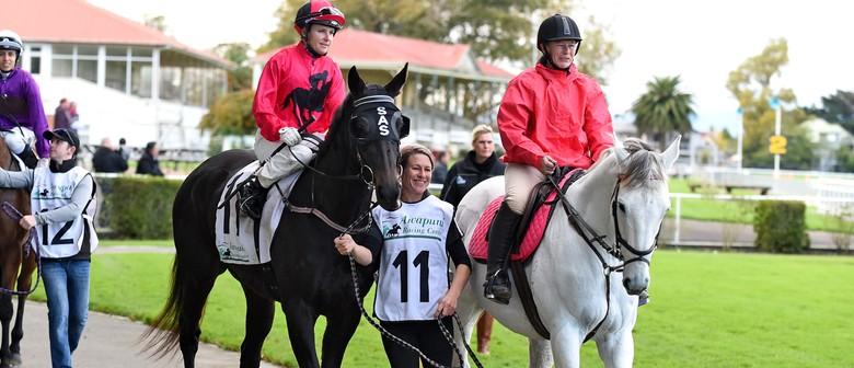 James Bull Rangitikei Gold Cup - Pink Ribbon Raceday