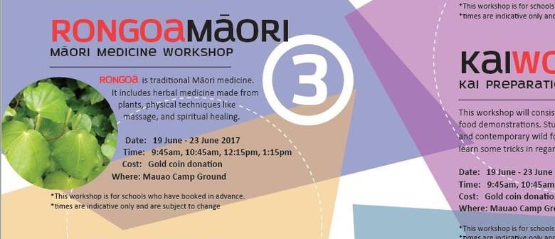 Rongoā Māori - Māori Medicine Workshop