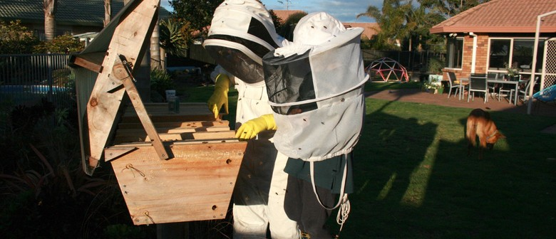 Urban Beekeeping: An Introductory Course