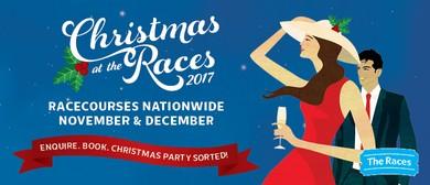 Wanganui Greyhounds Christmas At the Races