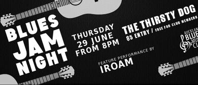 Blues Jam Night Ft Iroam