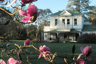 Gwavas Garden, House & Puahanui Bush Tour
