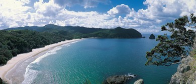 Meet and Greet - Destination Coromandel and Visitor Solution