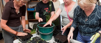 Curators' Edible Garden Sessions: Sowing and Growing