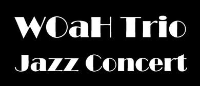 Rotary Mt Eden Presents The WOaH Trio Jazz Concert