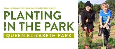 2017 Queen Elizabeth Park Community Planting Day