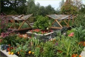 designing food gardens a permaculture workshop