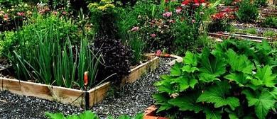 Designing Food Gardens - A Permaculture Workshop