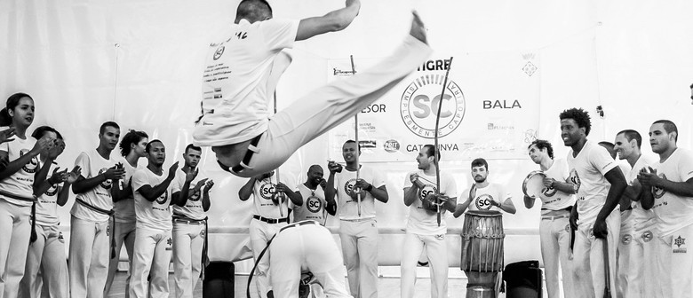Adult Capoeira Classes