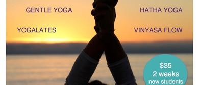 Yoga - Yin/Gentle Yoga Live Music