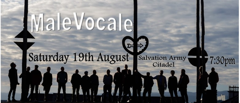 MaleVocale in Concert