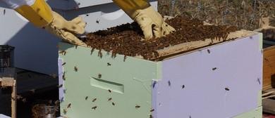 Bee Keeping Workshop