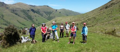 Kaituna Valley Settlers Walk - Walk Twenty Three