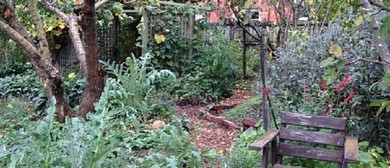 Backyards of Lyttelton - Walk Twenty Nine