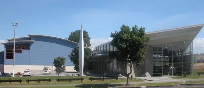 Te Matariki Clendon Library